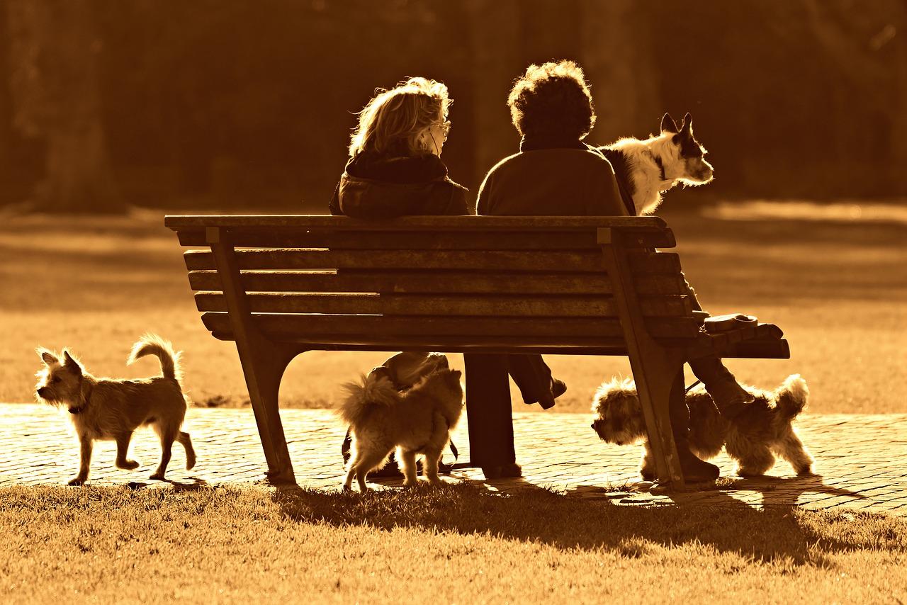 Conversación de discernimiento