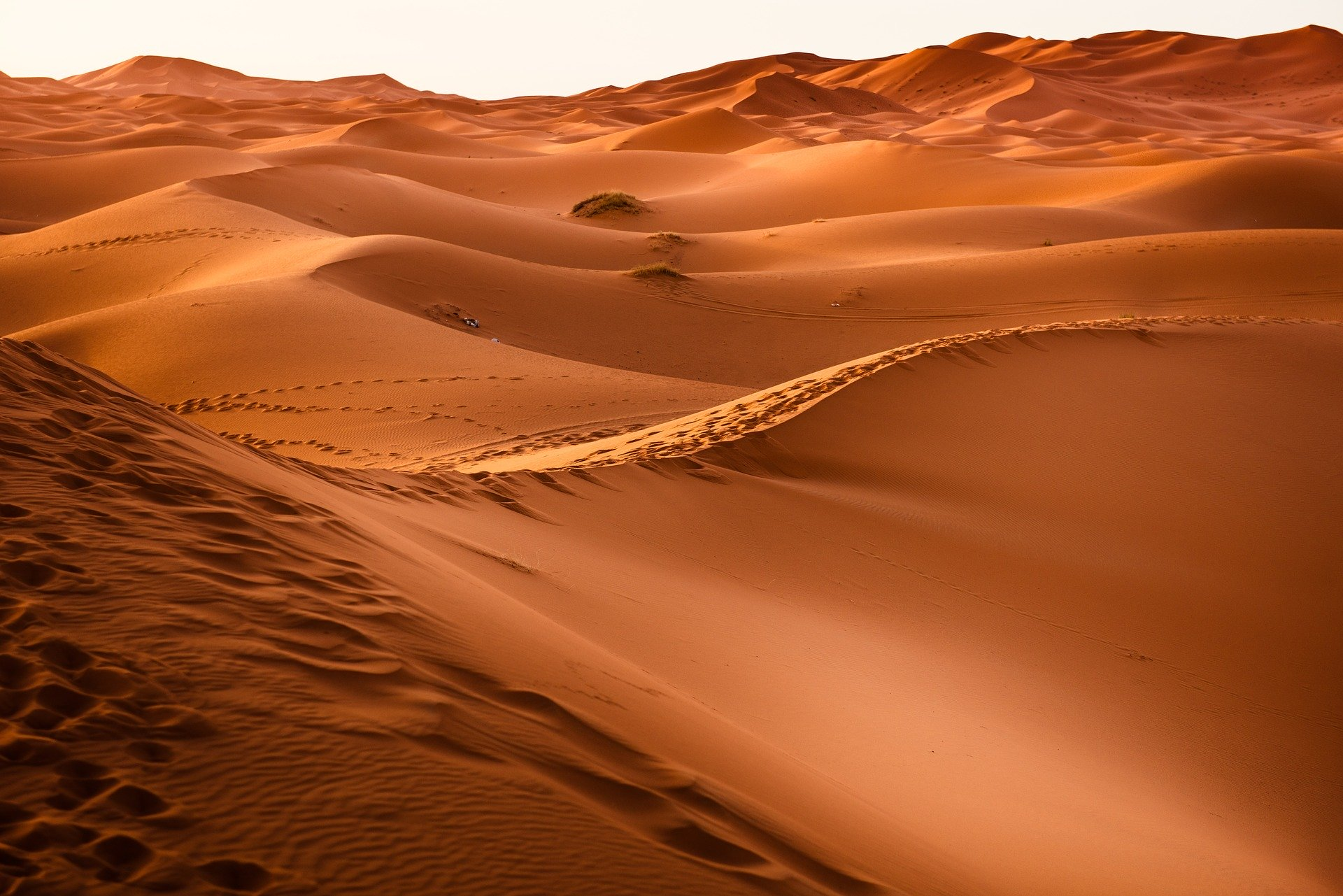 El Espíritu lo llevó al desierto